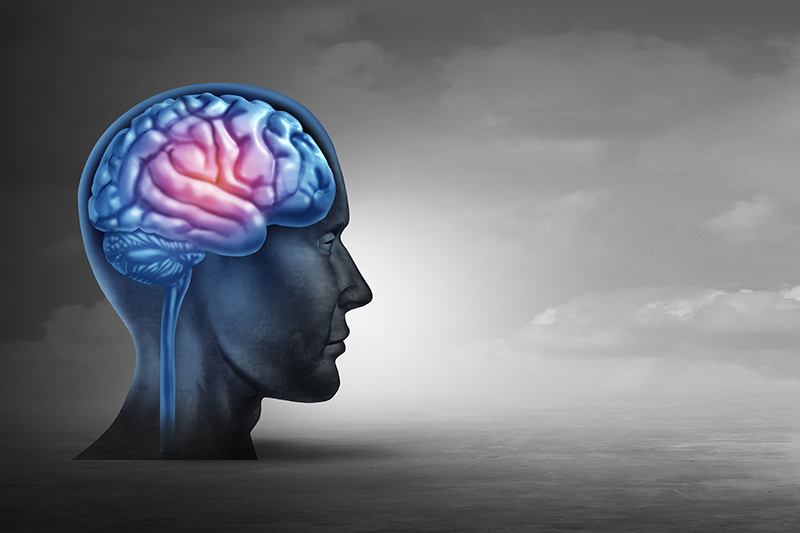 Alzheimer's Disease: Facts Versus Fiction