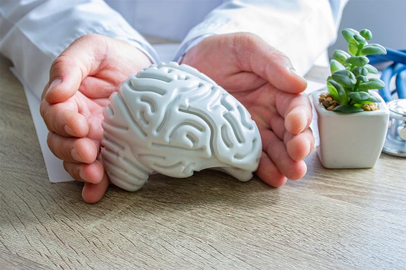 Brain Health: Myths Versus Reality